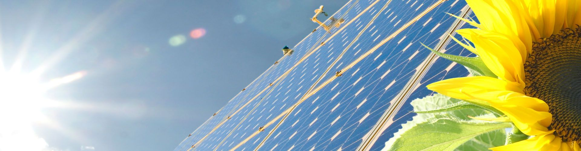 Environmentally Friendly Solar Panels Powering Wollongong